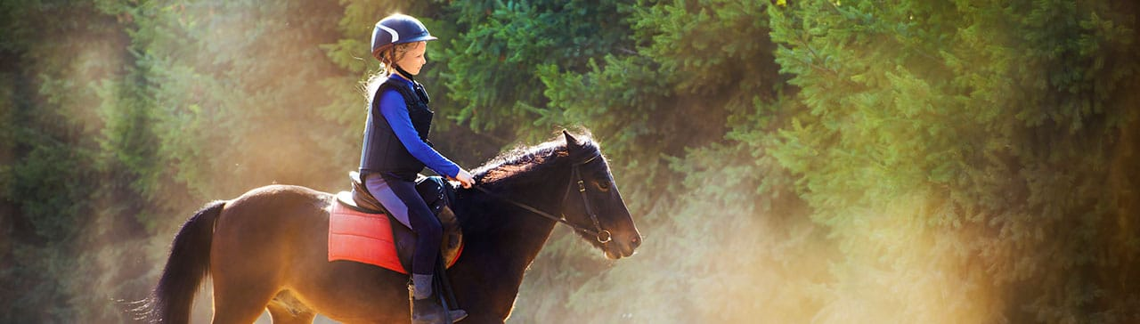 Try horseriding as part of an experience on holiday